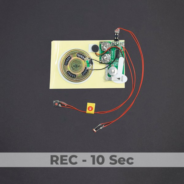 Light Activated Sound Module - Rec 10 Sec