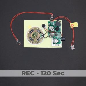 Line-in Port - Light Activated Sound Module - Rec 120 Sec