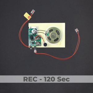 Push Button Sound Module - Rec 120 Sec