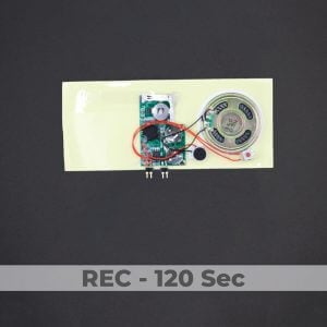 Greeting Card Sound Module - Rec 120 Sec
