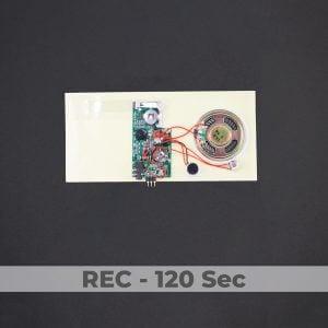 Line-in Port - Greeting Card Sound Module - Rec 120 Sec