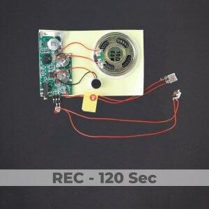 Line-in Port - Push Button Sound Module - Rec 120 Sec